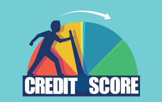 The Credit Scores Card Hotline Assists You With Shed